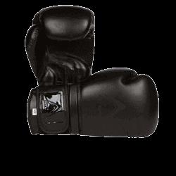 Athllete Boxing Gloves