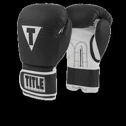 Title Boxing Pro