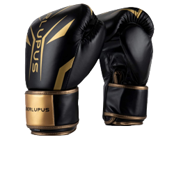 Liberlupus Boxing Gloves