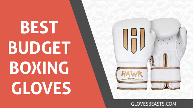 The 7 Best Budget Boxing Gloves