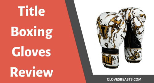 Title Boxing Gloves Review