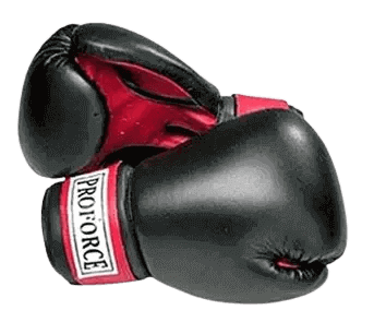 Pro Force Leatherette Boxing Gloves