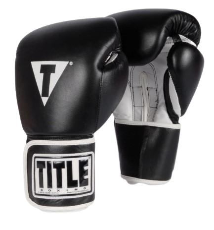 TITLE Boxing Pro Style