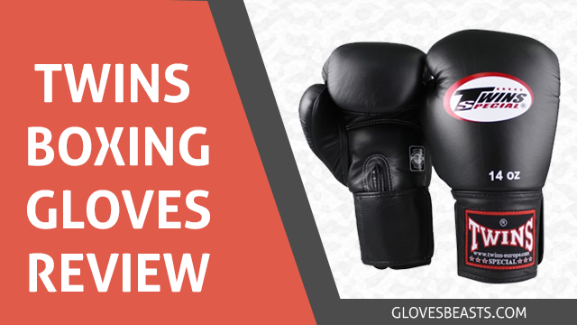 Twin Boxing Gloves Review