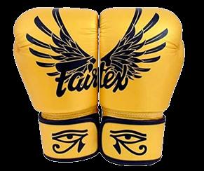 Fairtex BGV1 Falcon Boxing Gloves