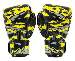 DHLX Fairtex Boxing Gloves