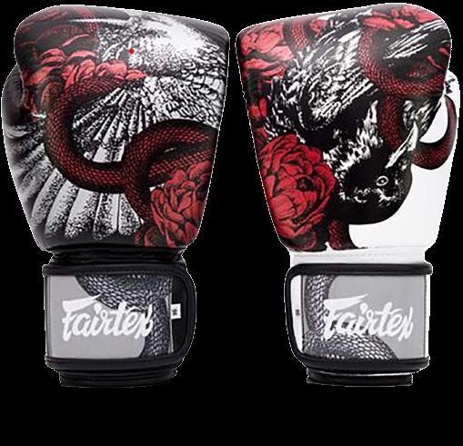 Fairtex Muay Thai Boxing Gloves Review