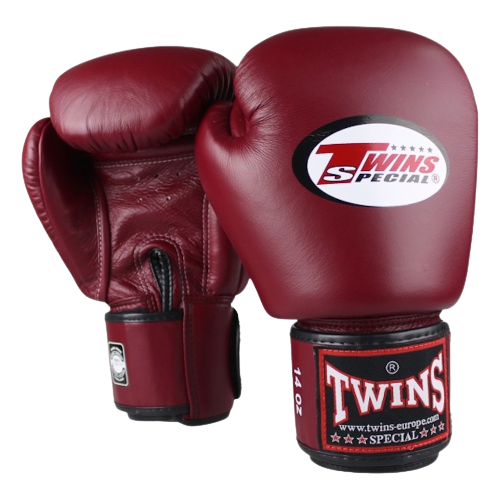 Best Twin Boxing Gloves Review